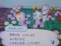 DSC007732.jpg