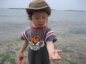貝ですねん
