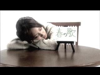 TA_haru_no_kaze_3.jpg
