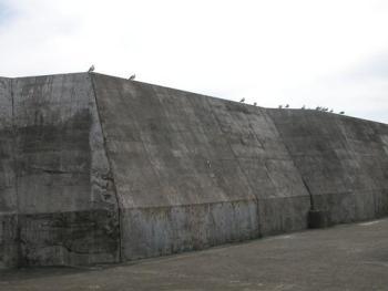 藍ヶ江巨大戦艦
