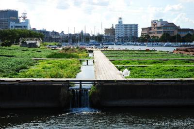070812_biopark.jpg