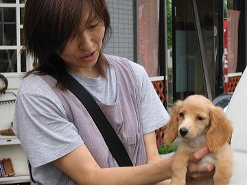 愛犬【ココ】-A