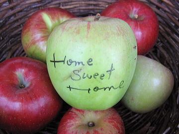 りんご園-D